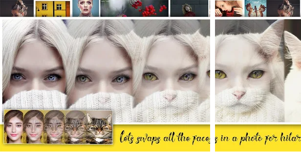 Face change and morphing animation creator application for photo morphing